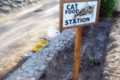 catfood station